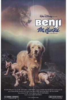 Benji, az üldözött